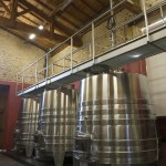 Vinification - Cuvier